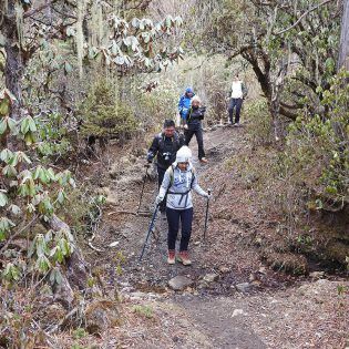 Druk Path Trek With Culture Tour